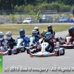 4-Stroke Racing Series 6-7-15 475
